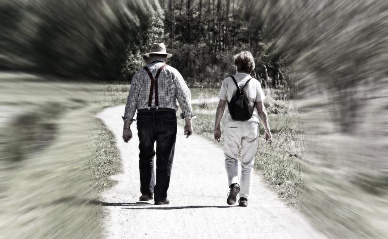 regresión de los paseos de la vida pasada